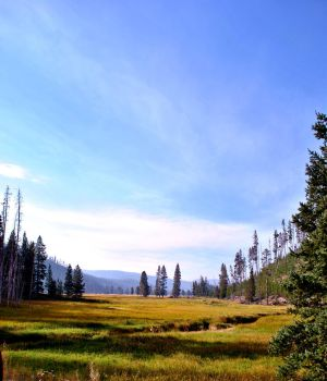 Yellowstone 2 by evisel