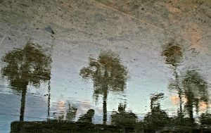 reflection by abdulicart