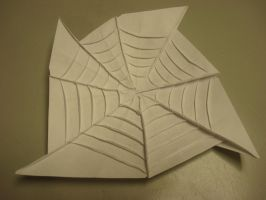 Origami spider web by MasonAndAGhast