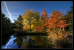Fall by stetre76