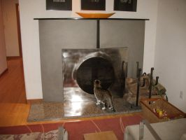 Fireplace Screen in stainless by ou8nrtist2