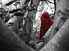 Red Riding Hood 3 by Luciferspet