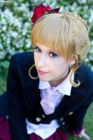 Beato close up by white---butterfly