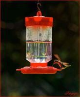 THE FEEDER by Artographs