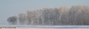 Winter landscape by ThereseBorg