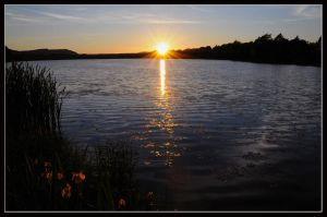 Evening Explosion by gordonrae