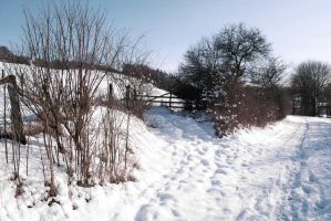 Snowscape Stock 18 by Sed-rah-Stock
