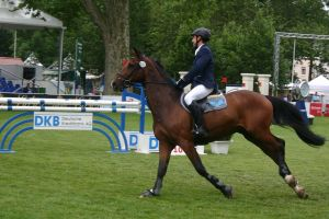 Show Jumping Stock 023 by LuDa-Stock
