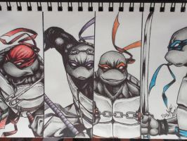 Teenage Mutant Ninja Turtles by JustinEugene