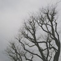 Apologetics by DasGhul