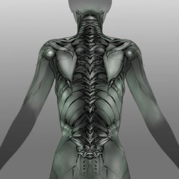 Exoskeletal design by adammdesigns