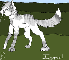 Ivypool :AT: by DigestHearts