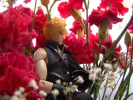Cloud with Carnations by DarkMuse112