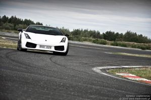 Gallardo Superleggera - 1 by Dhante