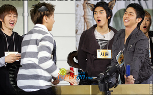 Cat Sungmin and Dog Siwon by TidusPoorPants
