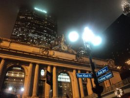 Grand Central by LilyLondon9