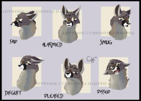:Moon Expressions: by Cylu-chan