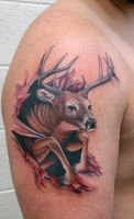 deer by Phedre1985