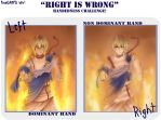 Right is Wrong Meme by PineNAPPO