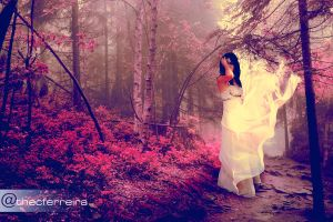 The Pink Forest by thecferreira
