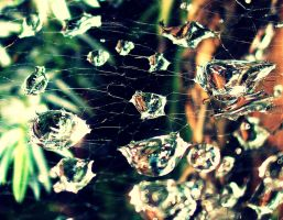Water droplets by Kellyx96