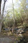 cosbycreek tn by capricious23pictures