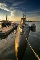 Submarine Lembit by Triumfa