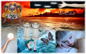 Commision - Siofra DoM Collage by ParallaxAlteration