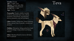 Teva's Reference by Neciridae