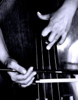 Hands of Doublebasist by cellists