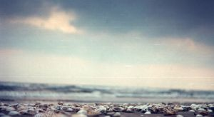 Chillout on sand by Dalash