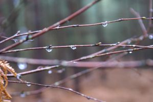 droplets by CazPUK