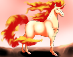 Rapidash 02 by Aira90