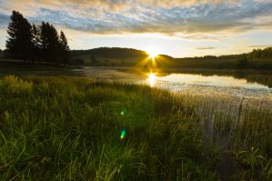 Sunrise at the Pond by Sulde