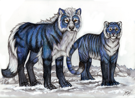 Switchback and Schnee by MorRokko