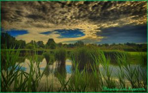 Hungarian landscapes.HDR-picture(photo series)28. by magyarilaszlo