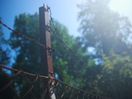 Rusted fence by bitterologist