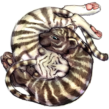 yin-yang tigers by ChartreuseBoots