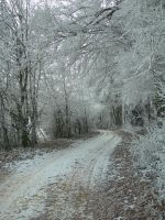 Winter Path II by kuschelirmel-stock