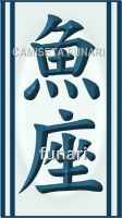 horoscopo peixes kanji by camiseta-funari