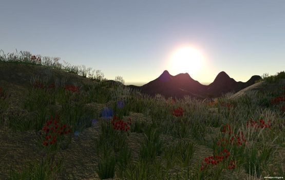 The beauty of nature games (4) by Sibilmor