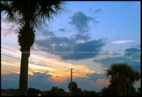 Palm Trees and Powerlines 0751 by anubis281