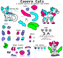 cavern cats SPECIES GUIDE by gemsoil
