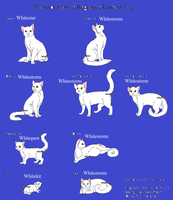 Whitestorm's Stages by skyclan199