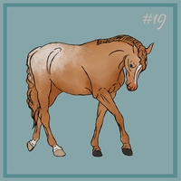 19 Red Dun Snowflake by EquineRibbon