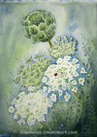 Queen Anne's Lace by IvieMoon
