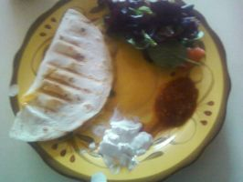 Qesadila platter ive made comes with side salad by DevinjKaibaSixx