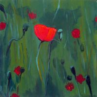 Poppies by HopelessBeliever
