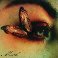 Moth by illusionality