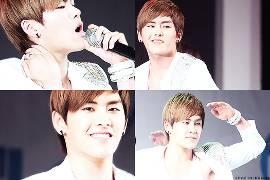 hoya by fiffy1008